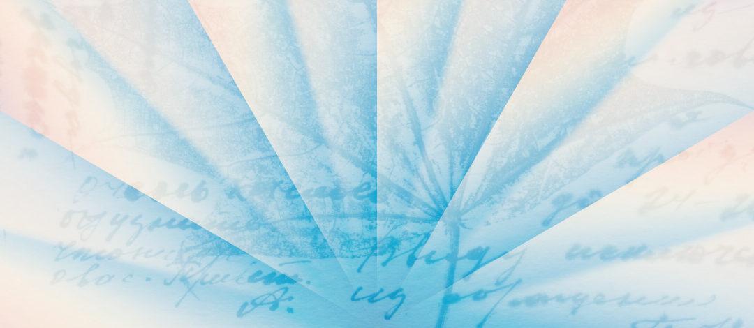 Umetnost opažanja ali kako ti lahko opazovanje stvari in sveta odpira notranjega duha